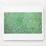 Grass Field Mousepads