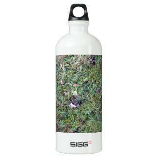 Grass field with brown leaves SIGG traveler 1.0L water bottle