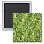 grass fridge magnets