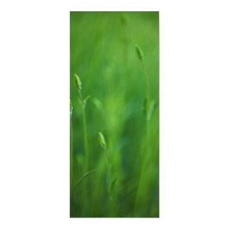 Grass - Green Grasses Background Template Card