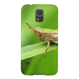 Grass Hopper on Leaf Case For Galaxy S5