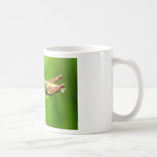 Grass Hopper on Leaf Mug