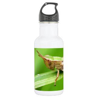 Grass Hopper on Leaf 18oz Water Bottle