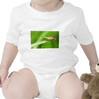 Grass Hopper on Leaf Romper