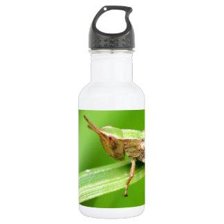 Grass Hopper on Leaf Water Bottle