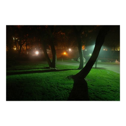 Grass in the fog print
