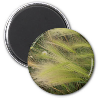 Grass in the wind 2 inch round magnet