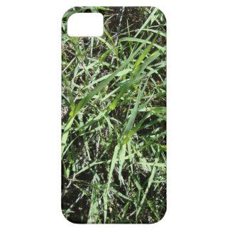 Grass iPhone SE/5/5s Case