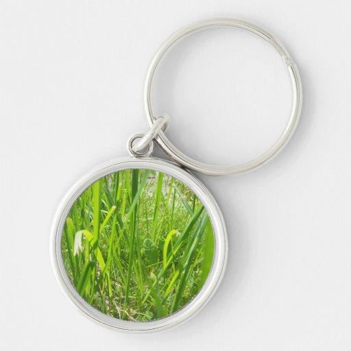 Grass Key Chains