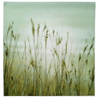 grass napkin