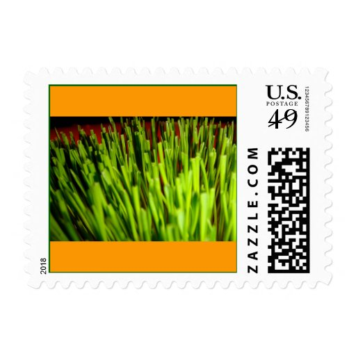 Grass on Orange Postage