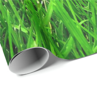 grass pattern, WRAP PAPER , Wrapping Paper
