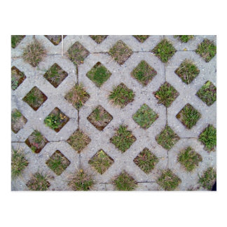 Grass Paver With Checkered Pattern Postcard