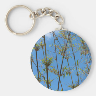 Grass photo on blue background key chain