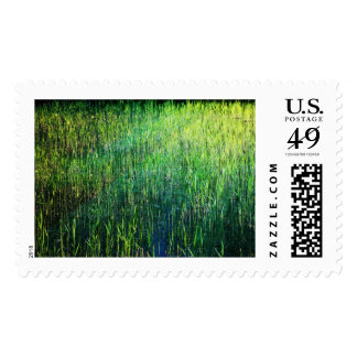 Grass Postage Stamps
