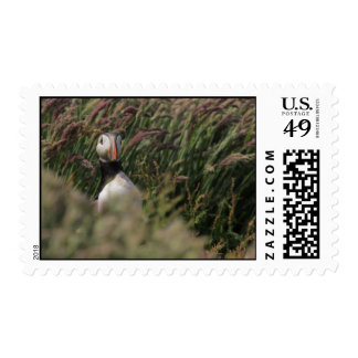 Grass Puffin Postage