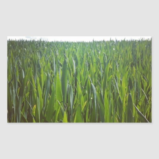 Grass Rectangular Sticker