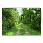 Grass Road into Woods Greeting Cards