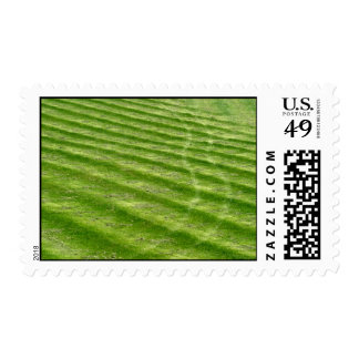 Grass Ruts Postage Stamp