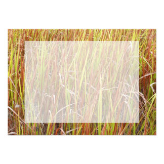 Grass sawgrass background florida plant custom invite