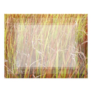 Grass sawgrass background florida plant letterhead