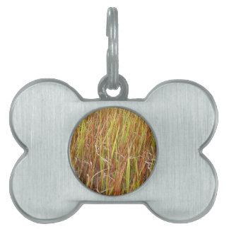 Grass sawgrass background florida plant pet tag