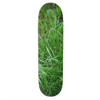 Grass Skateboard