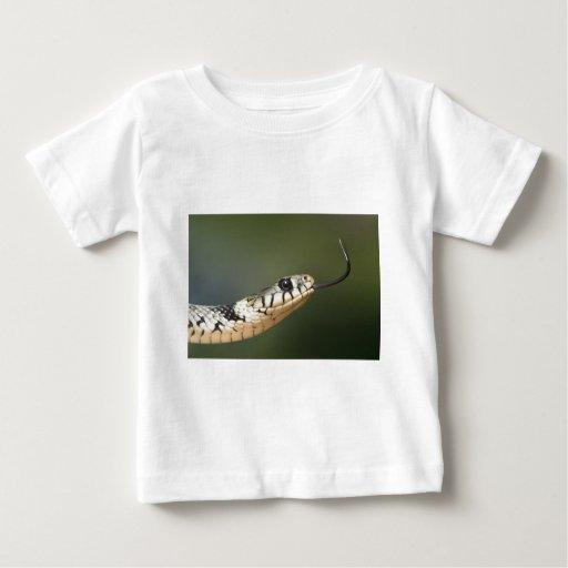Grass Snake Tee Shirts