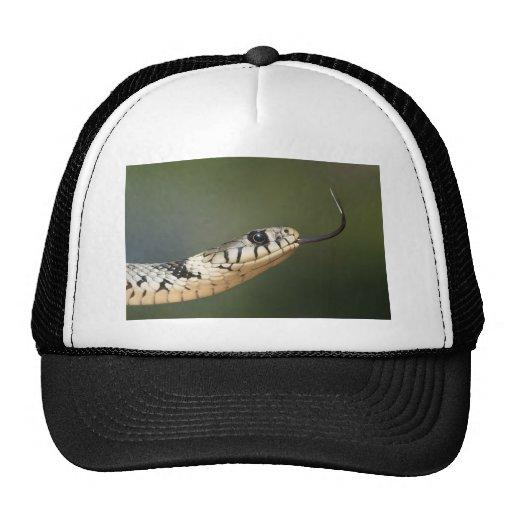 Grass Snake Trucker Hat