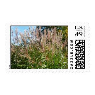 Grass - Stamp
