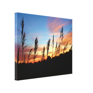 Grass Standing Tall – Early Morning Sunrise Canvas Print