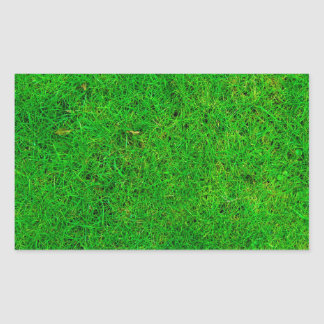 Grass Texture Rectangular Sticker