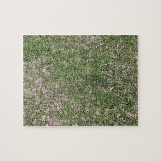 Grass Textures and Pattern Puzzles