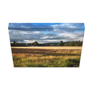 Grass Themed, A Field Mostly Covered With Dry Gras Canvas Print