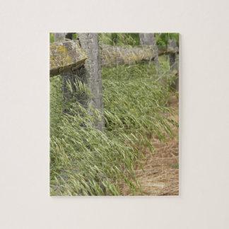 Grass Trail Puzzle