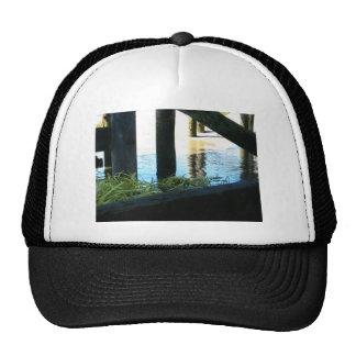 Grass Under Harbor Trucker Hats