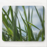 Grass world mouse pads