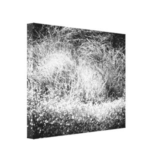 "Grasses - 20"" x 16"" Wrapped Canvas Print"