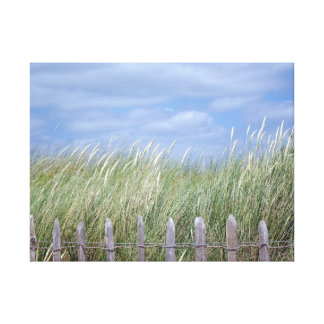 GRASSES AT DAWLISH WARREN CANVAS