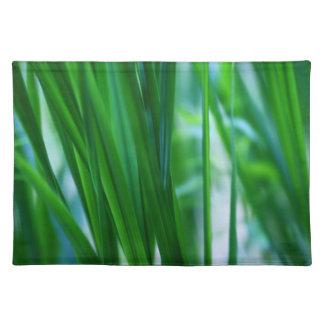 Grasses Cloth Placemat