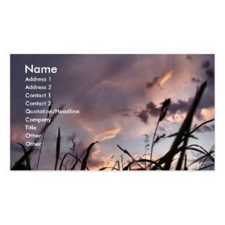 Grasses Double-Sided Standard Business Cards (Pack Of 100)
