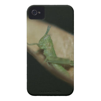 Grasshopa iPhone 4 Case