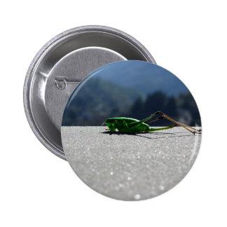 Grasshopper against the sun 2 inch round button