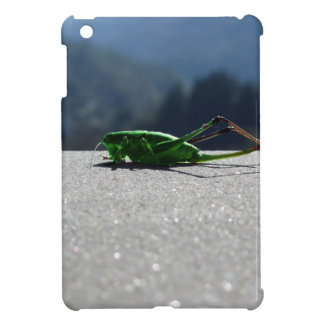 Grasshopper against the sun case for the iPad mini