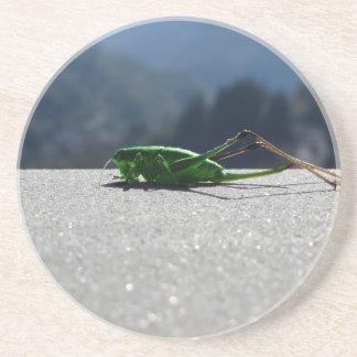 Grasshopper against the sun drink coaster