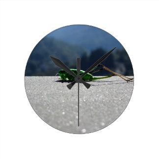Grasshopper against the sun round clock