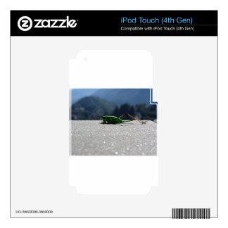 Grasshopper against the sun skins for iPod touch 4G
