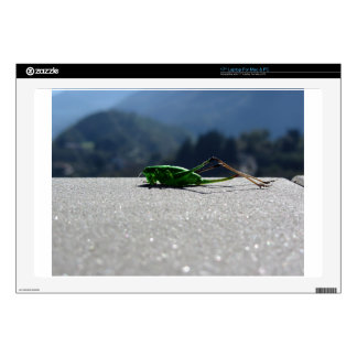 Grasshopper against the sun laptop decal