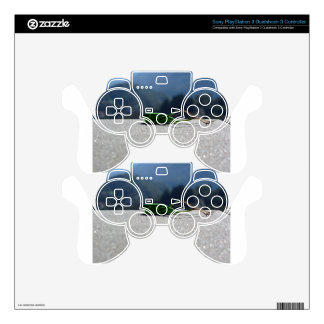 Grasshopper against the sun PS3 controller decal