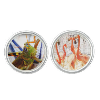 Grasshopper and Flamingoes Cufflinks